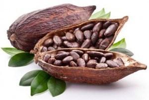 Khasiat Coklat atau Kakao