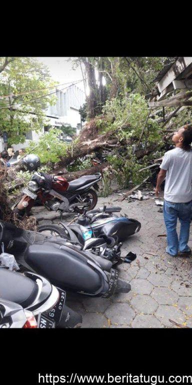Beberapa Pohon Besar Roboh Di RS SARDJITO Yogyakarta