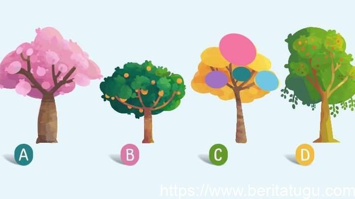Test Kepribadian : Pilih Salah Satu Gambar Pohon Dan Ketahui Sifat Aslimu!